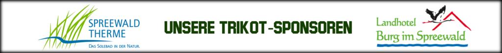 banner-sponsoren1